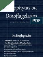 Dinophytas (Dinoflagelados)