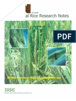 International Rice Research Notes Vol.25 No.2