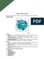 Apostila sobre Motores de Indução trifásicos I