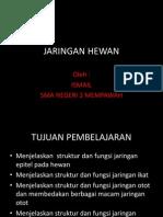 Jaringan Hewan Oleh Ismail