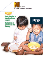 International Rice Research Notes Vol.28 No.1
