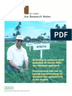 International Rice Research Notes Vol.29 No.1