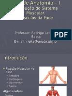 Aula de Anatomia – I