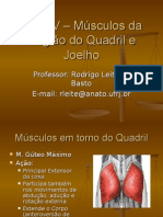 Aula IV – Músculos Da Região Do Quadril