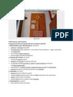 SPM Form 4