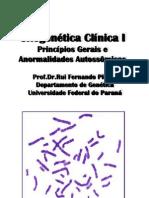 Aberrações Cromossômicas - I e II - 2011 09 30
