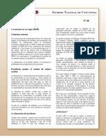 Informe Nacional de Coyuntura 20