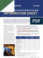 Bursary Information Sheet 2011[1]