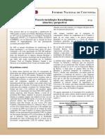 Informe Nacional de Coyuntura 31