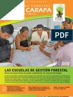 Boletín Nro 5 del Programa Forestal Baba Carapa