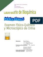 Lab n5 - Examen Fisico y Microscopico de Orina