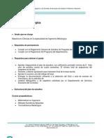 Ingenieria Metalurgica (USaltillo)