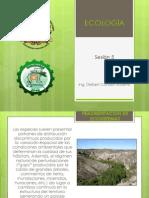 Diapositivas - 5