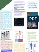 Duchenne Muscular Dystrophy Handout1