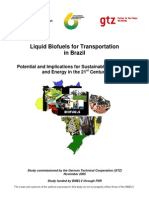 En Biofuels for Transportation in Brazil 2005