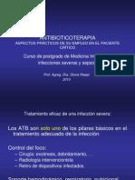 1. Antibióticoterapia 2010