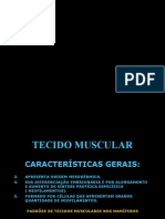 21 - Histologia 6 - Tecido Muscular