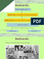 Biodiversity( Folio)