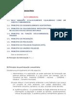 2009.09.02 - Dir. Ambiental - Princípios