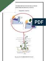 Bioquímica Vegetal 28 01 10