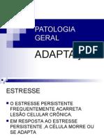 Patologia AdaptaÇÃo Medicina