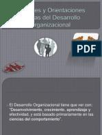 Enfoques y Orientaciones Futuras Del Desarrollo Organizacional111