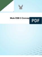 Mule Esb 3 Concepts