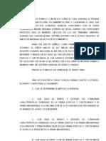 Cuestionario de puntos concretos sobre el cual versara la prueba pericial en grafoscopia documentoscopia y caligrafía a caro del perito Fidel vector González barrón