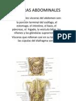 VISCERAS ABDOMINALES