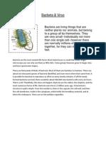 Bacteria&Virus - 05-09-11