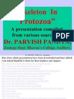 2 Skeleton in Protozoa