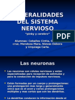 General Ida Des Del Sistema Nervioso 12