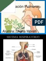 Respiracion Pulmonar Fisio 2 Sheila Morelli Prof Maubecin