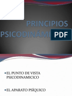 PRINCIPIOS PSICODINÁMICOS