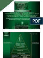 Presentacion Protocolo Doctoral