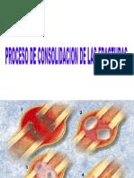 11-10 Clase Consolidacion y Pseudoartrosis