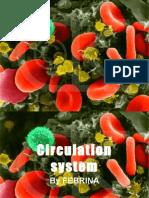 Circulation System