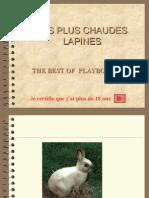 Chaulapines