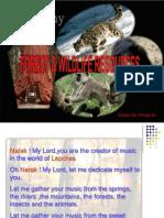 Presentation _Forest & Wildlife Class X