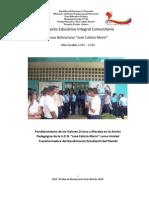 Proyecto Educativo Integral rio 2010.1docx