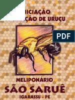 livro ABELHAS URUÇU