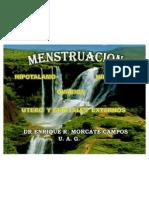 01 Menstruacion Actual 2007