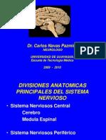 1.- Sist Ner C, P, Veg (PT)