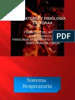 Anatomía y fisiología del Torax