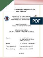 Informe Del Perro en Morfo