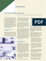 Sanar Miopia de Organizaciones