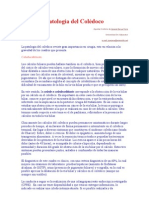 Patología del Colédoco