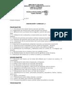 MODELO DOSIFICACIÓN DE CONTENIDOS - copia