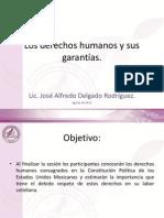 LOS DERECHOS HUMANOS Y SUS GARANTÍAS1