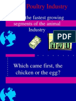 Poultry Industry Lec3